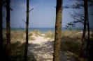 Morze w Grzybowie_7
